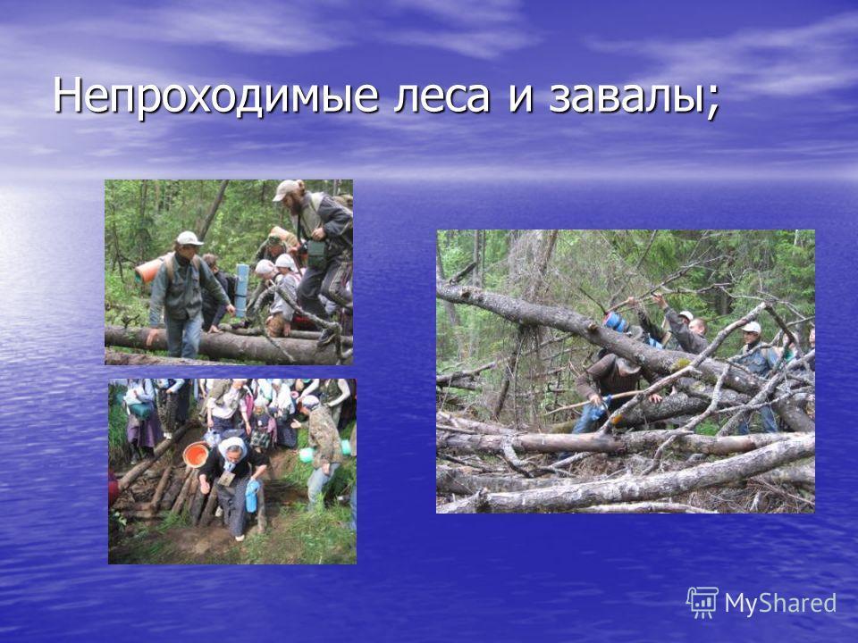 Непроходимые леса и завалы;