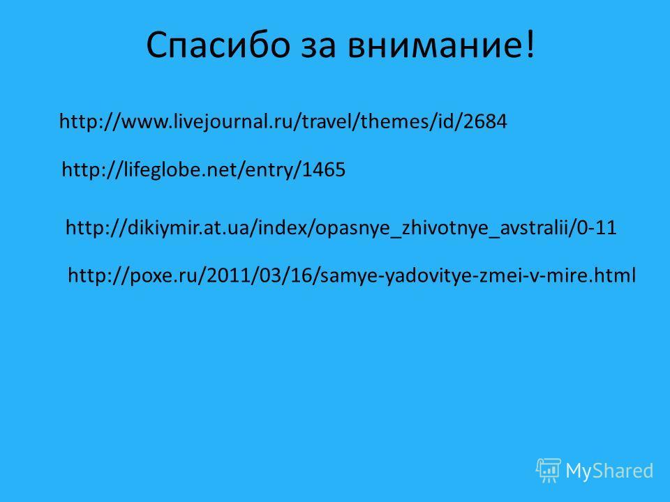 Спасибо за внимание! http://lifeglobe.net/entry/1465 http://www.livejournal.ru/travel/themes/id/2684 http://dikiymir.at.ua/index/opasnye_zhivotnye_avstralii/0-11 http://poxe.ru/2011/03/16/samye-yadovitye-zmei-v-mire.html