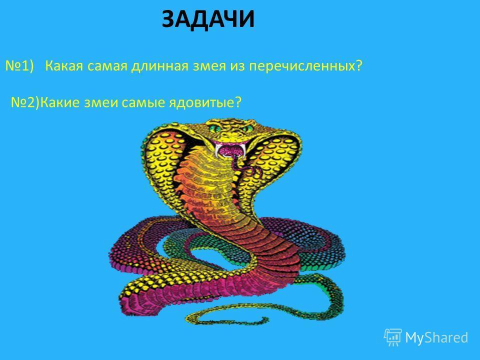 ЗАДАЧИ 1) Какая самая длинная змея из перечисленных? 2)Какие змеи самые ядовитые?