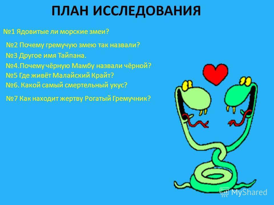 ПЛАН ИССЛЕДОВАНИЯ 1 Ядовитые ли морские змеи? 2 Почему гремучую змею так назвали? 3 Другое имя Тайпана. 4. Почему чёрную Мамбу назвали чёрной? 5 Где живёт Малайский Крайт? 6. Какой самый смертельный укус? 7 Как находит жертву Рогатый Гремучник?