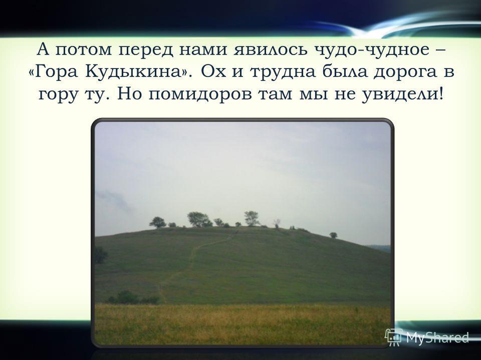 А потом перед нами явилось чудо-чудное – «Гора Кудыкина». Ох и трудна была дорога в гору ту. Но помидоров там мы не увидели!