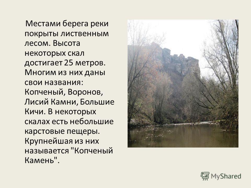Местами берега реки покрыты лиственным лесом. Высота некоторых скал достигает 25 метров. Многим из них даны свои названия: Копченый, Воронов, Лисий Камни, Большие Кичи. В некоторых скалах есть небольшие карстовые пещеры. Крупнейшая из них называется