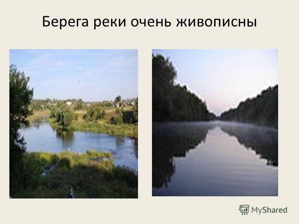 Берега реки очень живописны