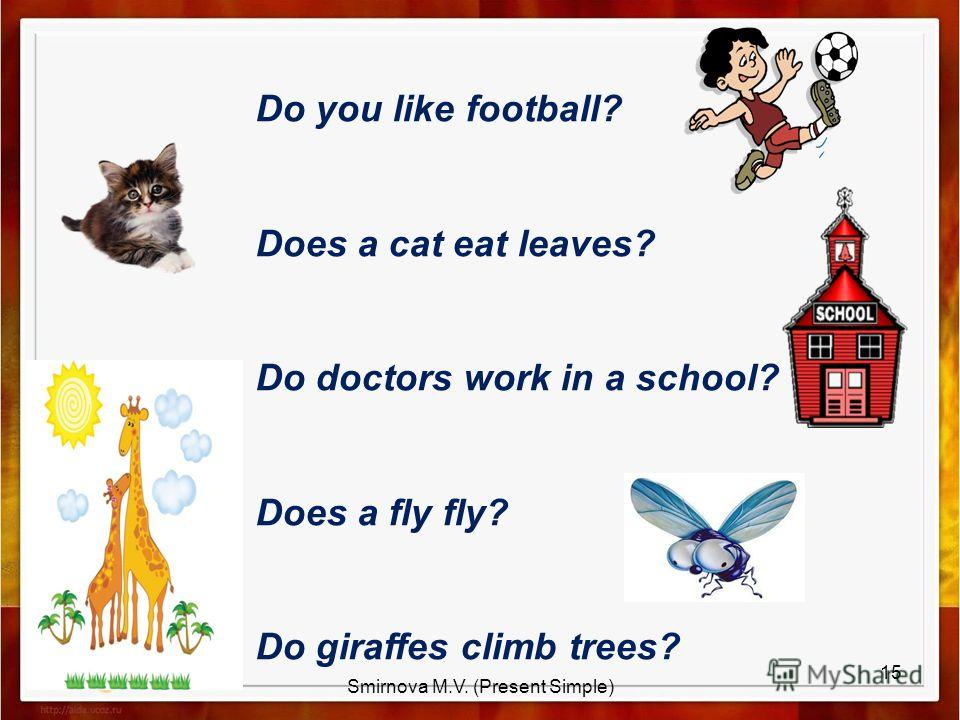 Do you like football? Does a cat eat leaves? Do doctors work in a school? Does a fly fly? Do giraffes climb trees? 15 Smirnova M.V. (Present Simple)