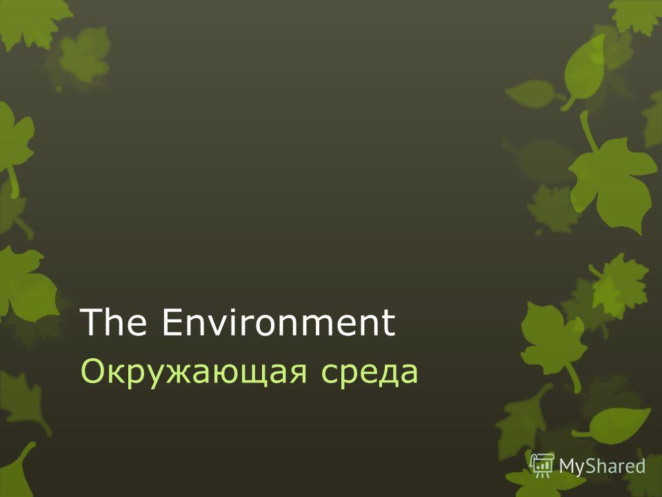 The Environment Окружающая среда