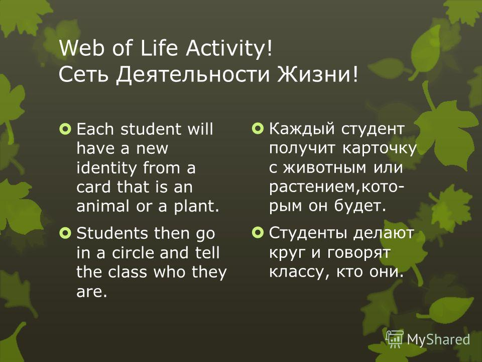Web of Life Activity! Сеть Деятельности Жизни! Each student will have a new identity from a card that is an animal or a plant. Students then go in a circle and tell the class who they are. Каждый студент получит карточку с животным или растением,кото