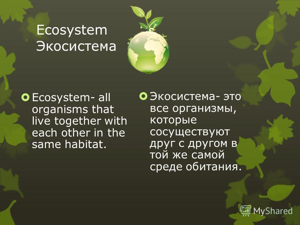 the connection of organisms to each other in the web of life Start studying chapter 2: principles of ecology(study guide) learn the same region and interacting with each other where an organism lives its life t.