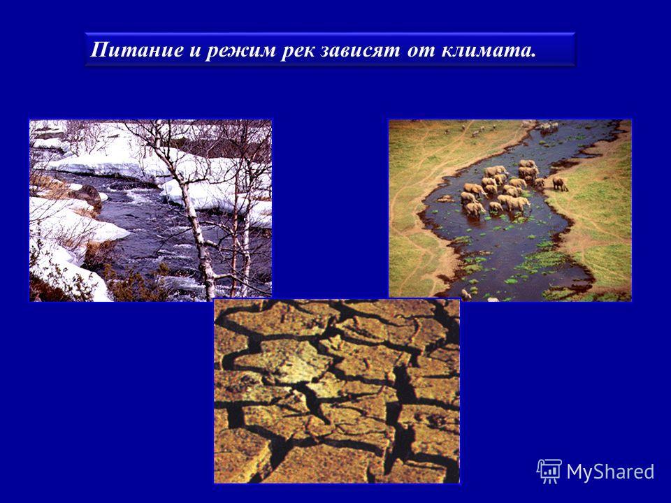 Паводок - внезапный подъем уровня воды в реке, вызванный выпадением сильных дождей, усилением таяния снега или ледников.