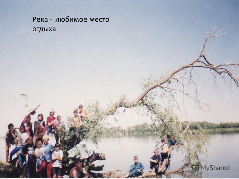 Река - любимое место отдыха