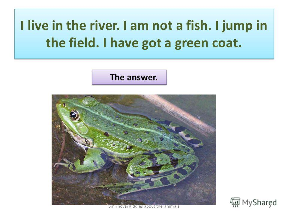 I live in the river. I am not a fish. I jump in the field. I have got a green coat. The answer. 9Smirnova/Riddles about the animals