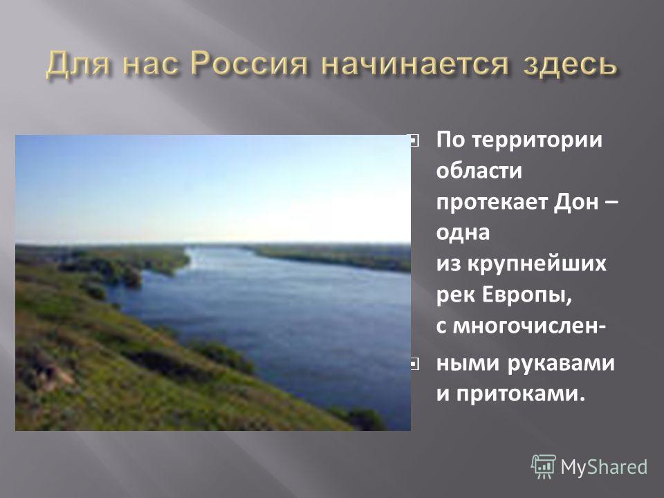 По территории области протекает Дон – одна из крупнейших рек Европы, с многочислен- ными рукавами и притоками.