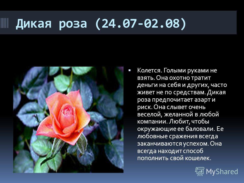 Дикая роза (24.07-02.08) Колется. Голыми руками не взять. Она охотно тратит деньги на себя и других, часто живет не по средствам. Дикая роза предпочитает азарт и риск. Она слывет очень веселой, желанной в любой компании. Любит, чтобы окружающие ее б