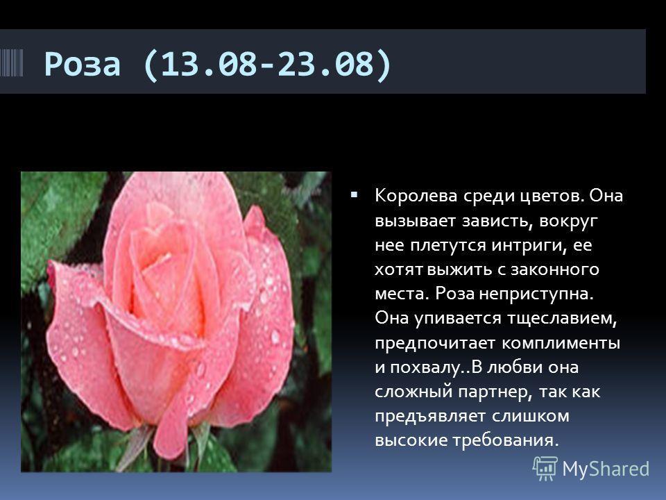 Роза (13.08-23.08) Королева среди цветов. Она вызывает зависть, вокруг нее плетутся интриги, ее хотят выжить с законного места. Роза неприступна. Она упивается тщеславием, предпочитает комплименты и похвалу..В любви она сложный партнер, так как пред