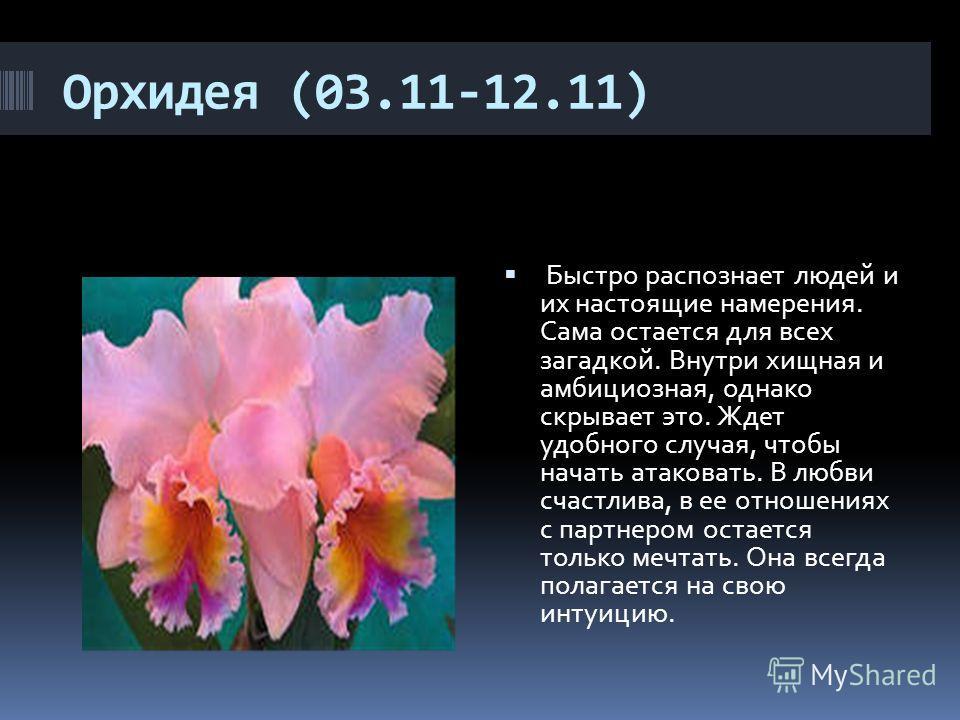 Орхидея (03.11-12.11) Быстро распознает людей и их настоящие намерения. Сама остается для всех загадкой. Внутри хищная и амбициозная, однако скрывает это. Ждет удобного случая, чтобы начать атаковать. В любви счастлива, в ее отношениях с партнером о