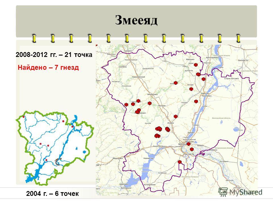 Змееяд 2004 г. – 6 точек 2008-2012 гг. – 21 точка Найдено – 7 гнезд
