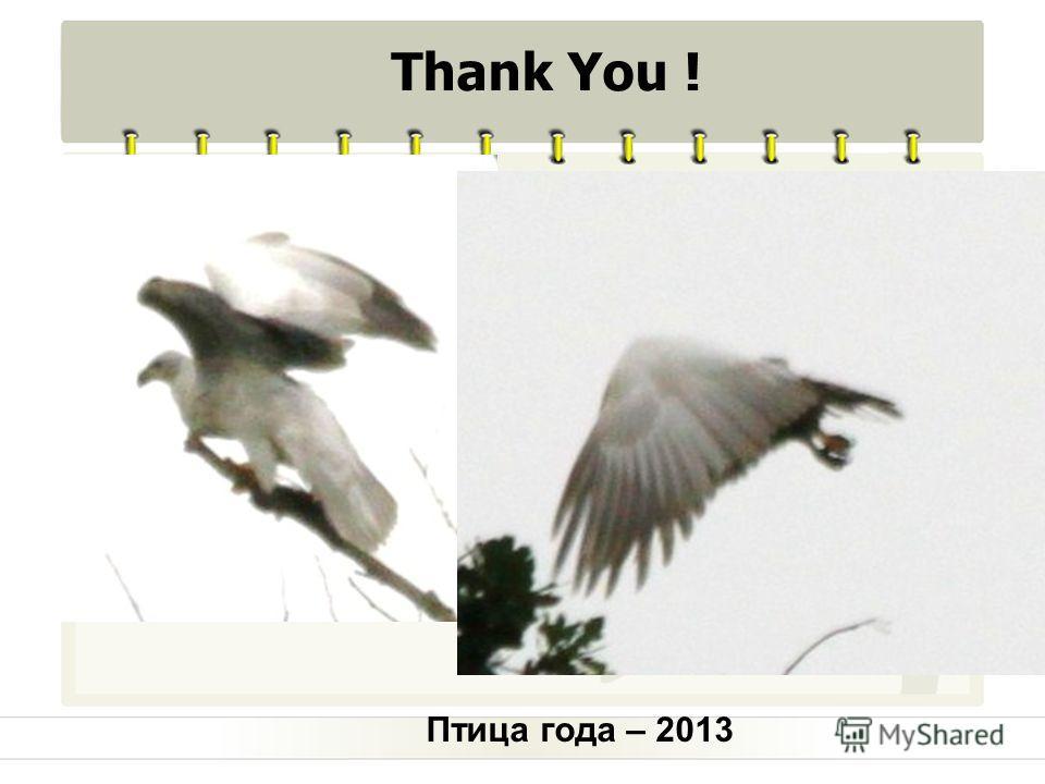 Птица года – 2013