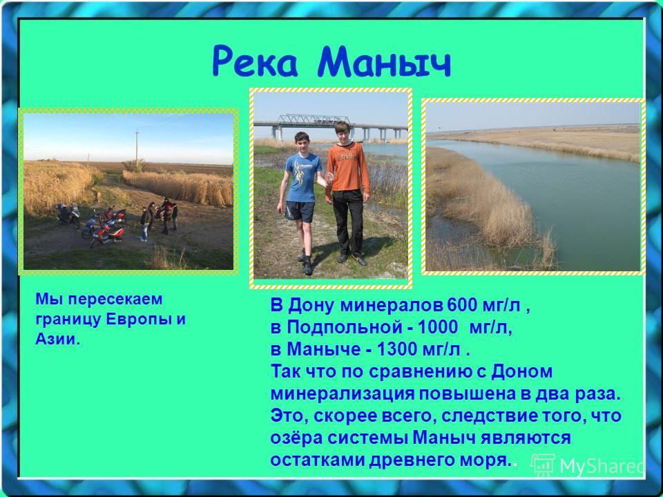 Река Маныч В Дону минералов 600 мг/л, в Подпольной - 1000 мг/л, в Маныче - 1300 мг/л. Так что по сравнению с Доном минерализация повышена в два раза. Это, скорее всего, следствие того, что озёра системы Маныч являются остатками древнего моря.. Мы пер
