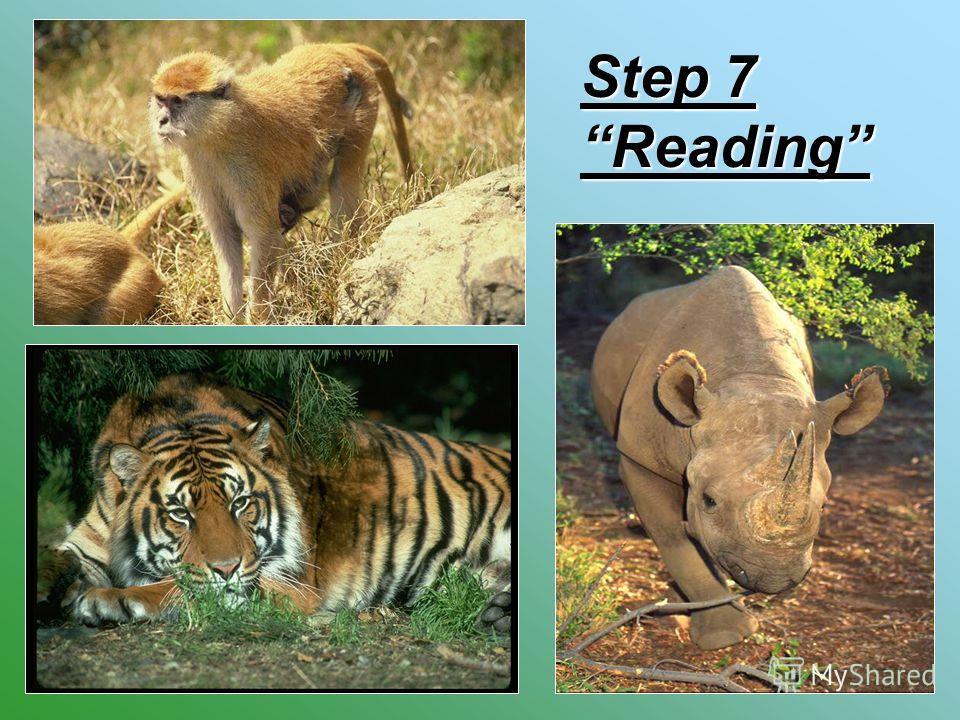 Step 7 Reading