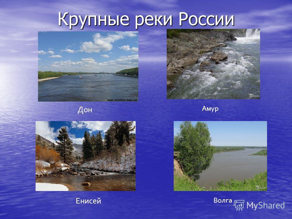 Крупные реки России Дон Амур Енисей Волга