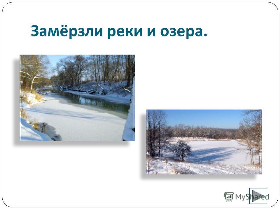 Морозы сковали землю.