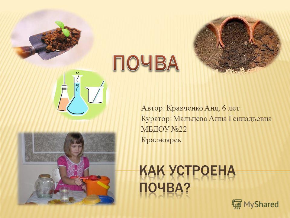 Автор: Кравченко Аня, 6 лет Куратор: Мальцева Анна Геннадьевна МБДОУ 22 Красноярск