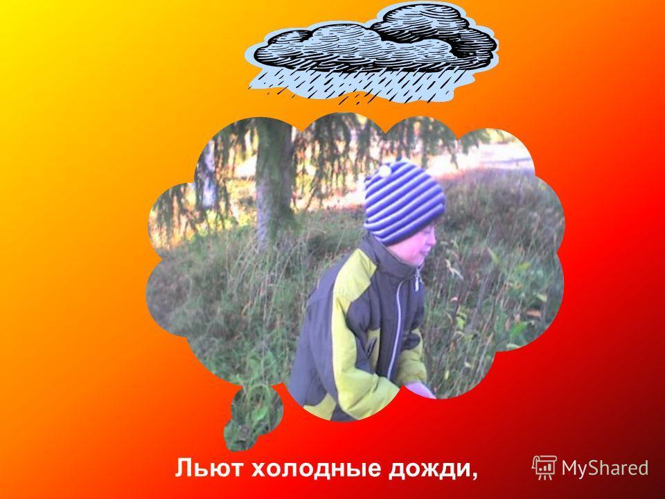 Льют холодные дожди,