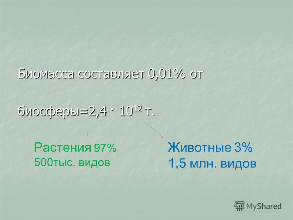 Биомасса составляет 0,01% от биосферы=2,4 · 10 12 т. Растения 97% 500 тыс. видов Животные 3% 1,5 млн. видов