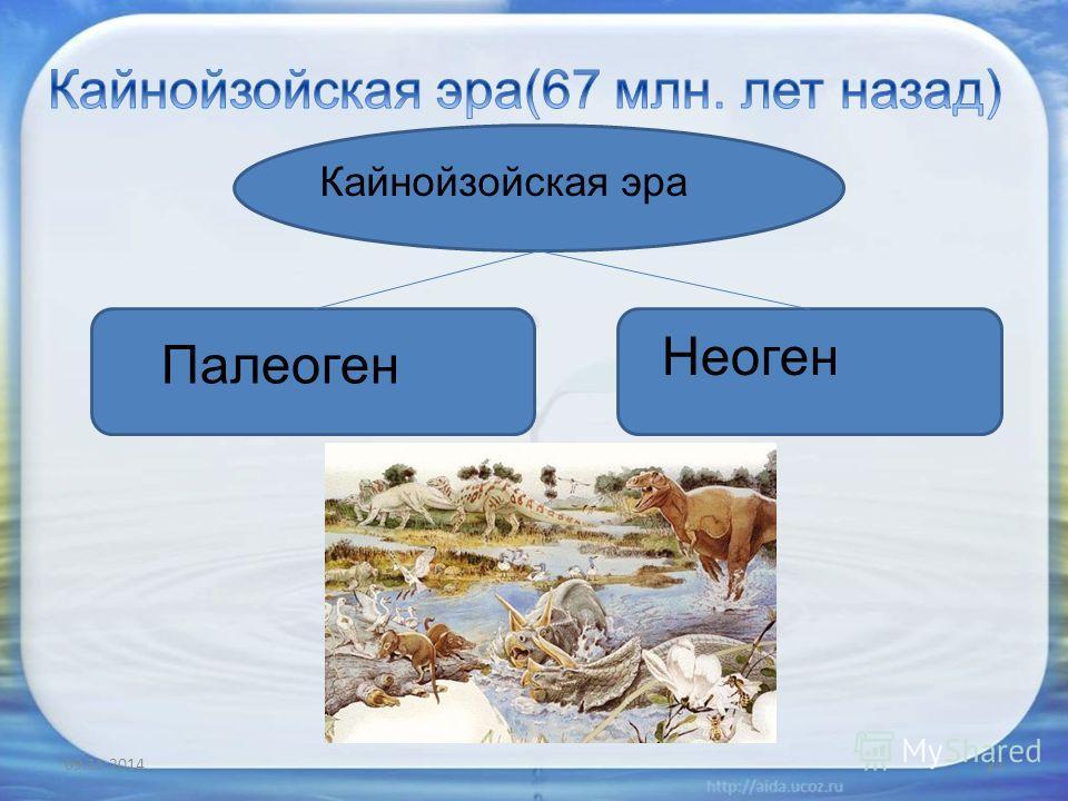 09.11.201421 Кайнойзойская эра Палеоген Неоген