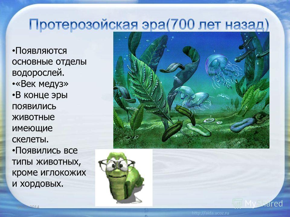 09.11.20145 Появляются основные отделы водорослей. «Век медуз» В конце эры появились животные имеющие скелеты. Появились все типы животных, кроме иглокожих и хордовых.