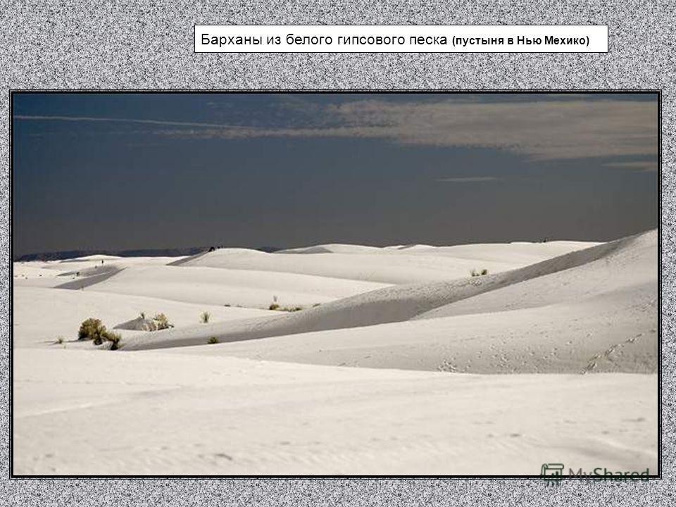 Барханы из белого гипсового песка (пустыня в Нью Мехико)