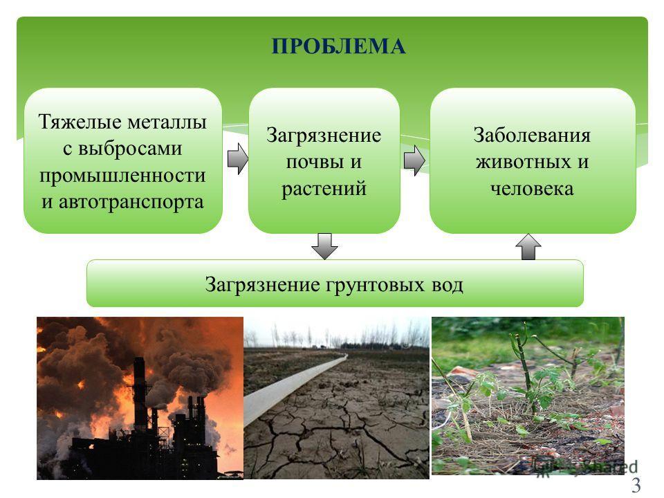 3 ПРОБЛЕМА Тяжелые металлы с выбросами промышленности и автотранспорта Загрязнение почвы и растений Заболевания животных и человека Загрязнение грунтовых вод 3