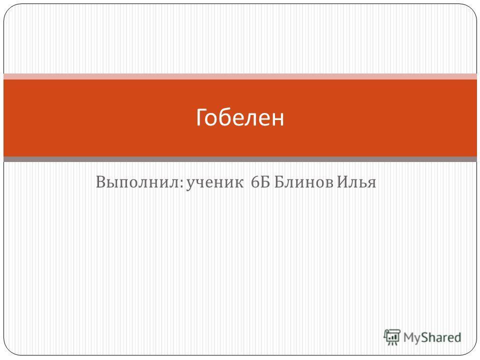 Выполнил : ученик 6 Б Блинов Илья Гобелен