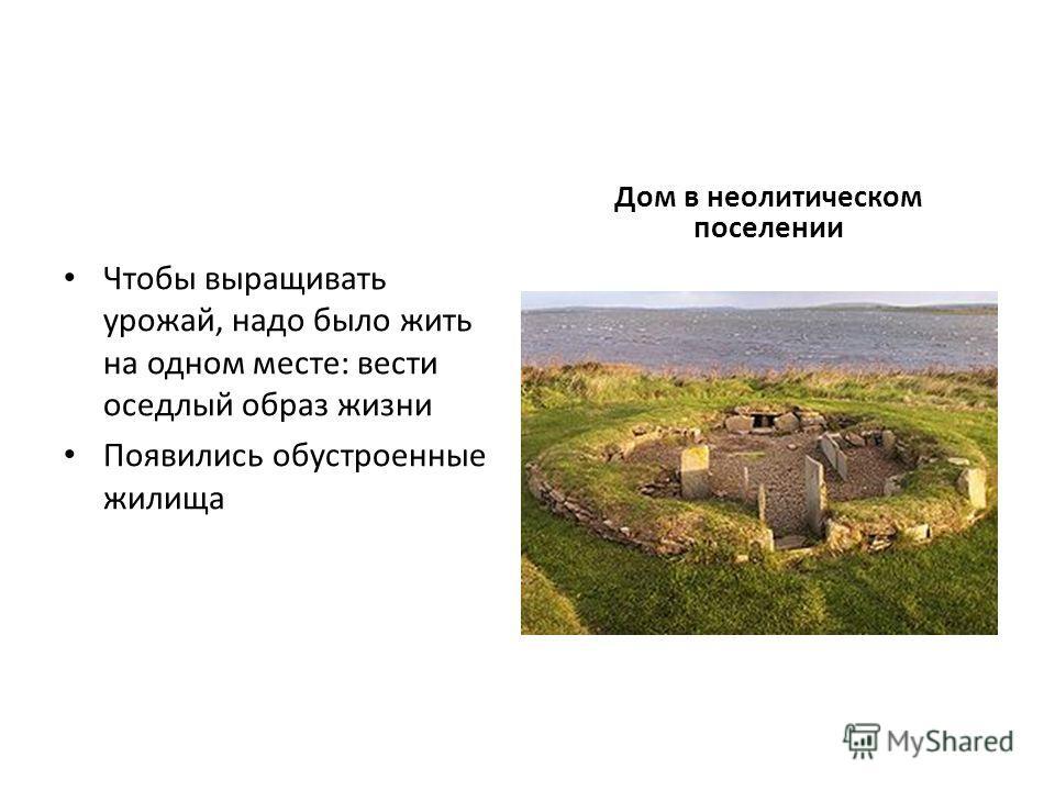Чтобы выращивать урожай, надо было жить на одном месте: вести оседлый образ жизни Появились обустроенные жилища Дом в неолитическом поселении