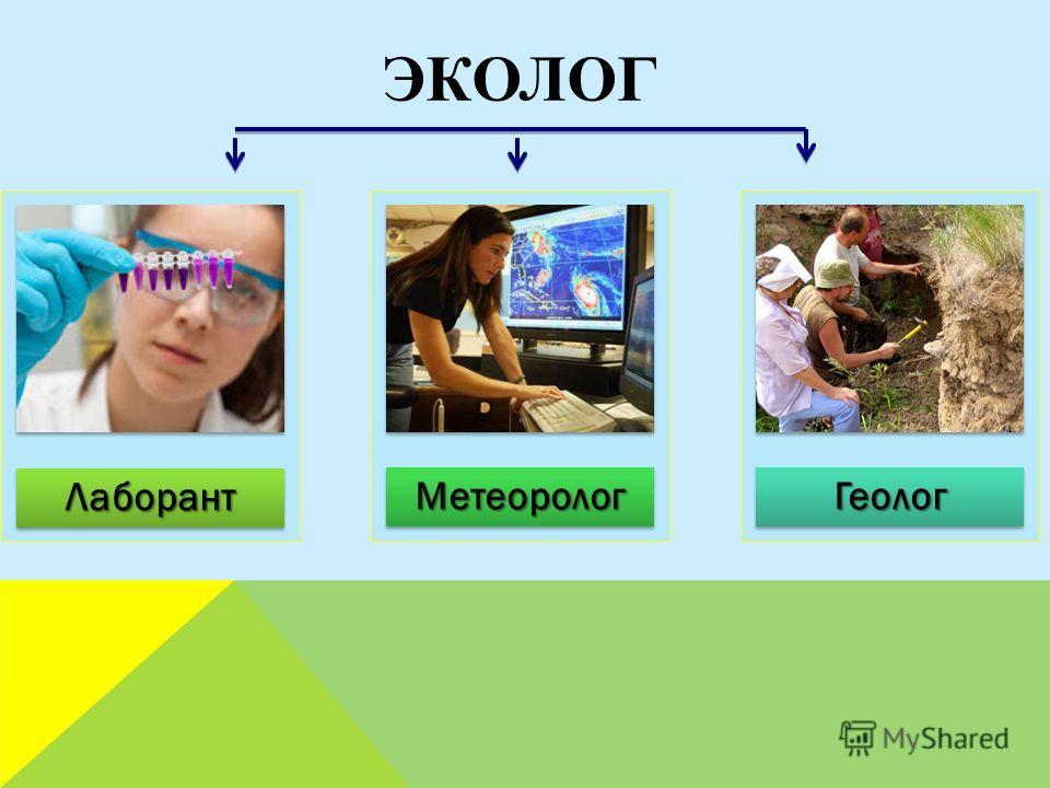 Лаборант Метеоролог Геолог