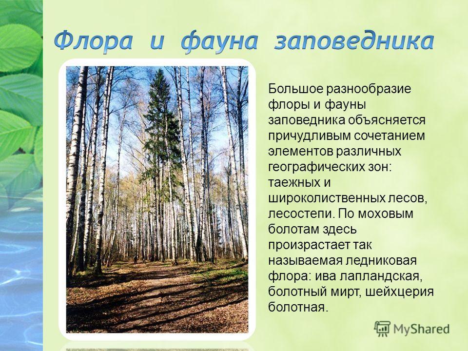 Большое разнообразие флоры и фауны заповедника объясняется причудливым сочетанием элементов различных географических зон: таежных и широколиственных лесов, лесостепи. По моховым болотам здесь произрастает так называемая ледниковая флора: ива лапландс
