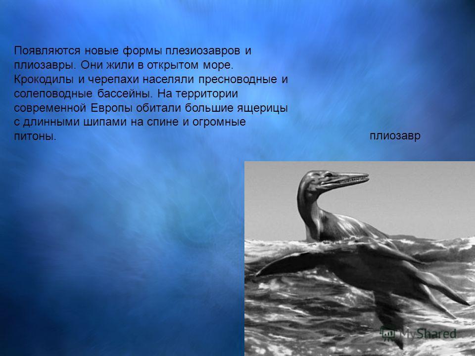 Появляются новые формы плезиозавров и плиозавры. Они жили в открытом море. Крокодилы и черепахи населяли пресноводные и солеповодные бассейны. На территории современной Европы обитали большие ящерицы с длинными шипами на спине и огромные питоны. плио