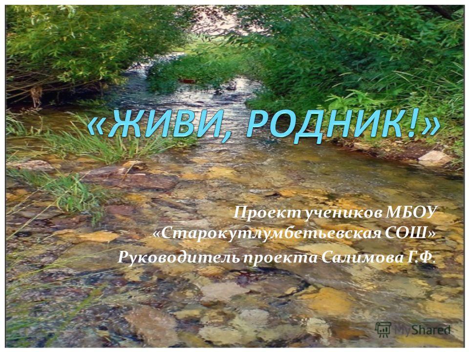 Проект учеников МБОУ «Старокутлумбетьевская СОШ» Руководитель проекта Салимова Г.Ф.