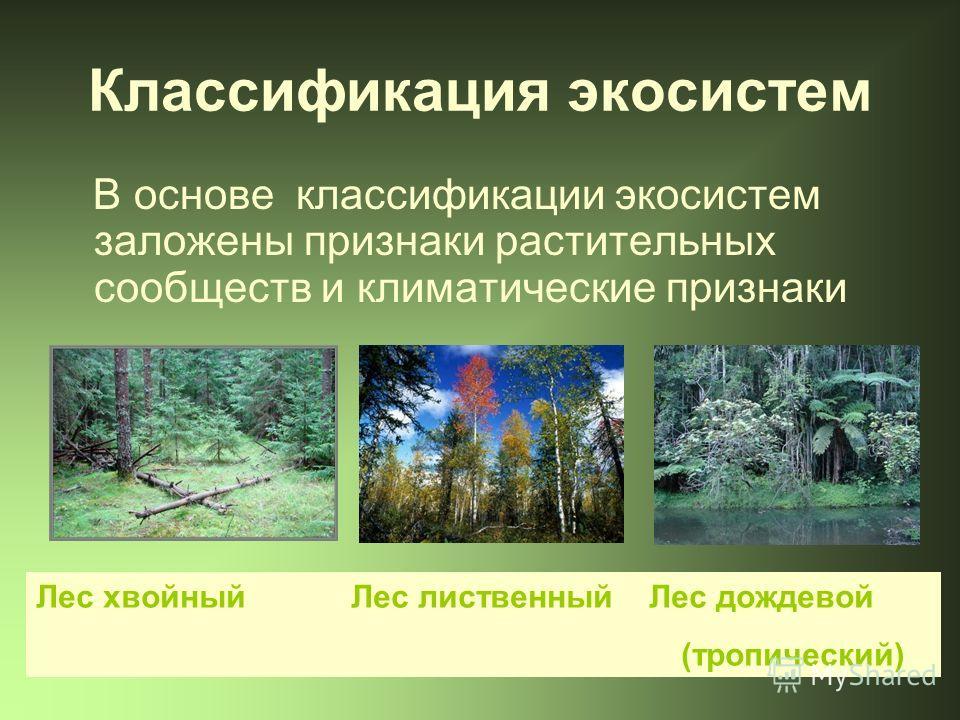 Классификация экосистем В основе классификации экосистем заложены признаки растительных сообществ и климатические признаки Лес хвойный Лес лиственный Лес дождевой (тропический)
