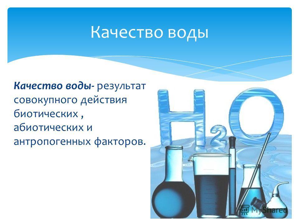 Качество воды- результат совокупного действия биотических, абиотических и антропогенных факторов. Качество воды