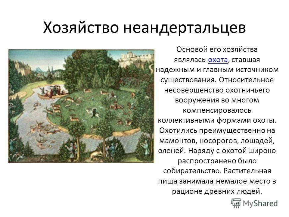 Хозяйство неандертальцев Основой его хозяйства являлась охота, ставшая надежным и главным источником существования. Относительное несовершенство охотничьего вооружения во многом компенсировалось коллективными формами охоты. Охотились преимущественно