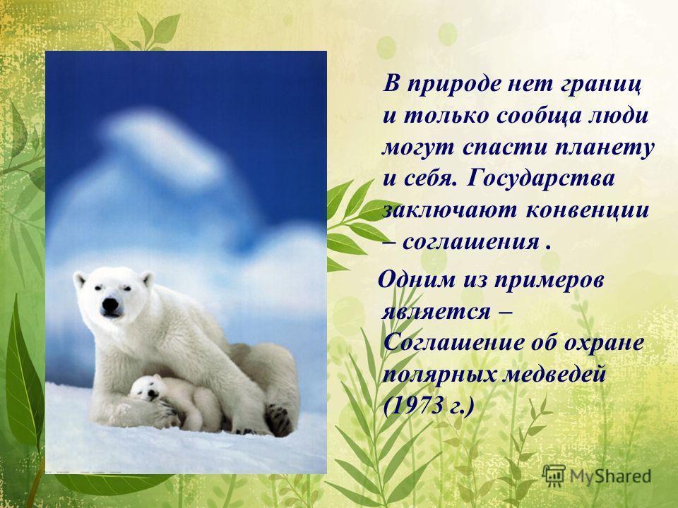 В природе нет границ и только сообща люди могут спасти планету и себя. Государства заключают конвенции – соглашения. Одним из примеров является – Соглашение об охране полярных медведей (1973 г.)