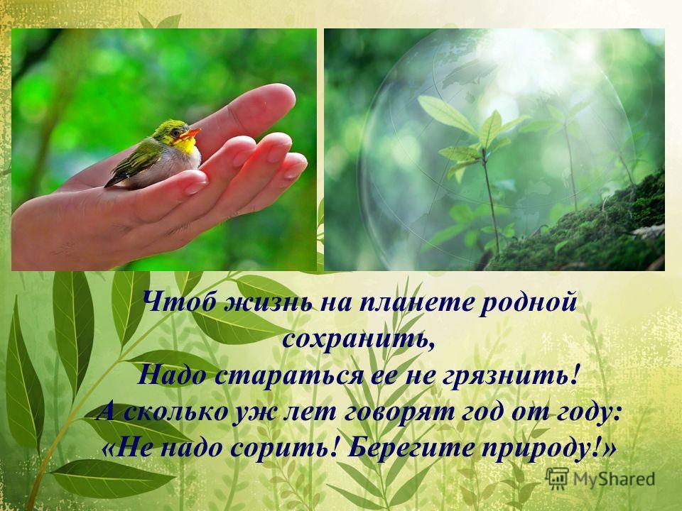 Чтоб жизнь на планете родной сохранить, Надо стараться ее не грязнить! А сколько уж лет говорят год от году: «Не надо сорить! Берегите природу!»