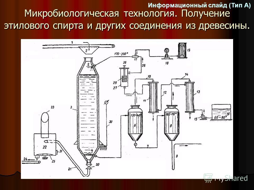 Микробиологическая технология. Получение этилового спирта и других соединения из древесины. Информационный слайд (Тип А)