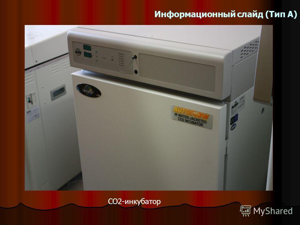 Информационный слайд (Тип А) СО2-инкубатор