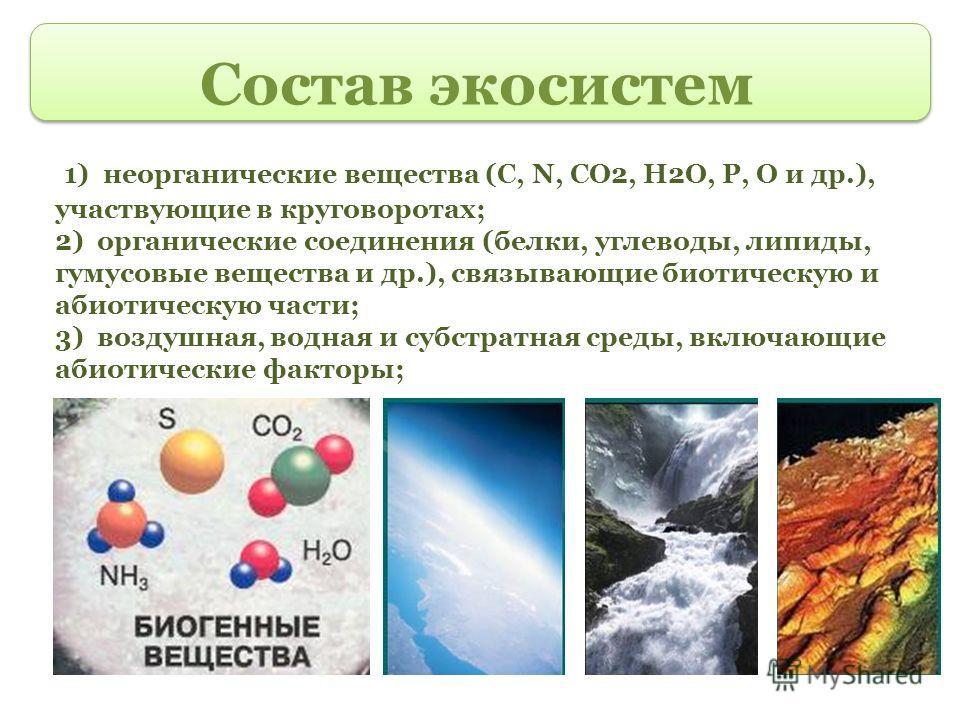 Состав экосистем 1) неорганические вещества (С, N, СО2, Н2О, Р, О и др.), участвующие в круговоротах; 2) органические соединения (белки, углеводы, липиды, гумусовые вещества и др.), связывающие биотическую и абиотическую части; 3) воздушная, водная и