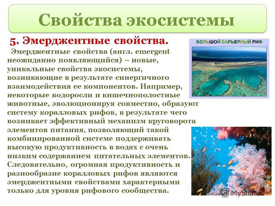 Свойства экосистемы 5. Эмерджентные свойства. Эмерджентные свойства (англ. emergent неожиданно появляющийся) – новые, уникальные свойства экосистемы, возникающие в результате синергичного взаимодействия ее компонентов. Например, некоторые водоросли и