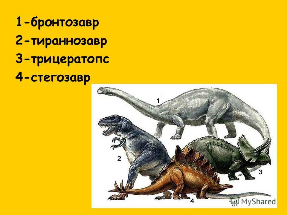 1-бронтозавр 2-тираннозавр 3-трицератопс 4-стегозавр
