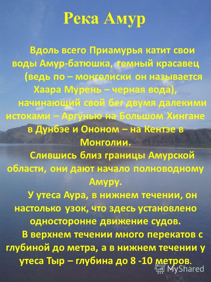 Река Амур Вдоль всего Приамурья катит свои воды Амур-батюшка, темный красавец (ведь по – монголиски он называется Хаара Мурень – черная вода), начинающий свой бег двумя далекими истоками – Аргунью на Большом Хингане в Дунбэе и Ононом – на Кентэе в Мо