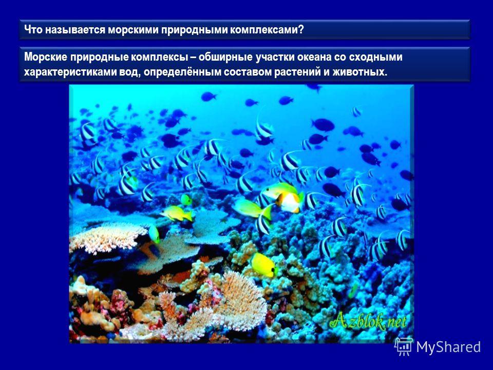 Что называется морскими природными комплексами? Морские природные комплексы – обширные участки океана со сходными характеристиками вод, определённым составом растений и животных.