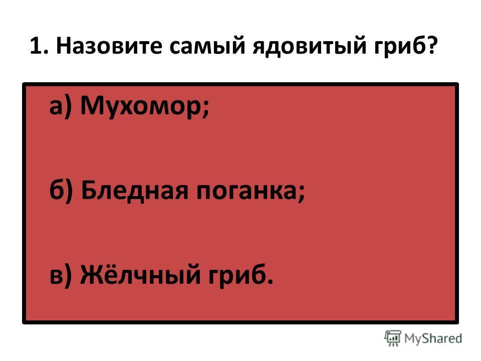 1. Назовите самый ядовитый гриб? а) Мухомор; б) Бледная поганка; в) Жёлчный гриб.